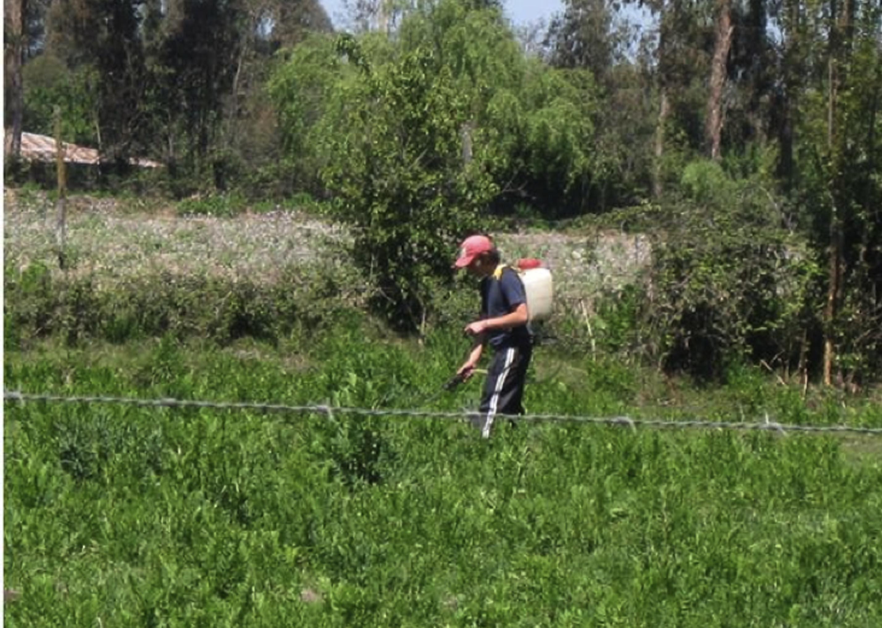 UCM celebra cancelación de autorizaciones a plaguicidas peligrosos en Chile