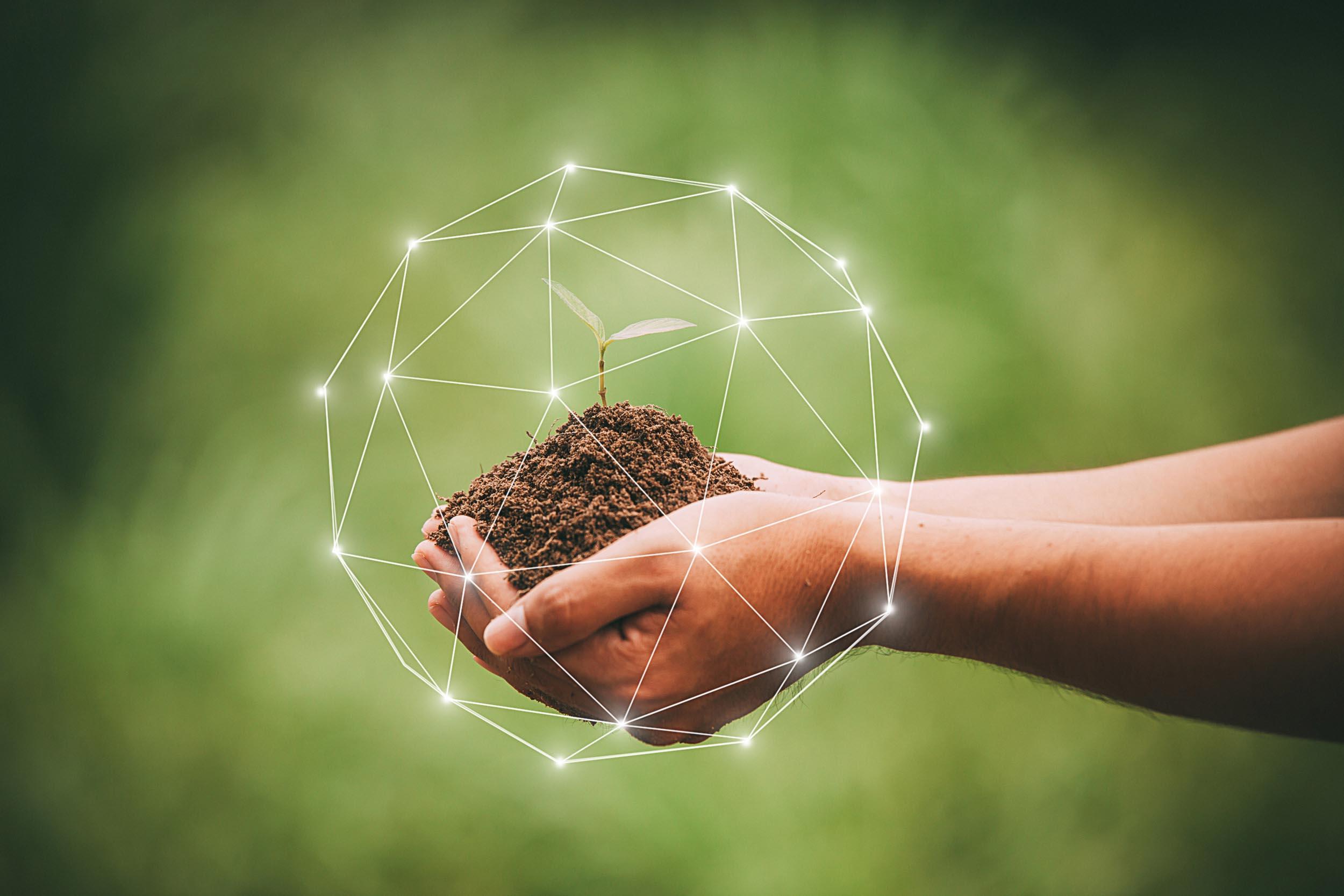 Diplomado UCM formará especialistas en educación ambiental