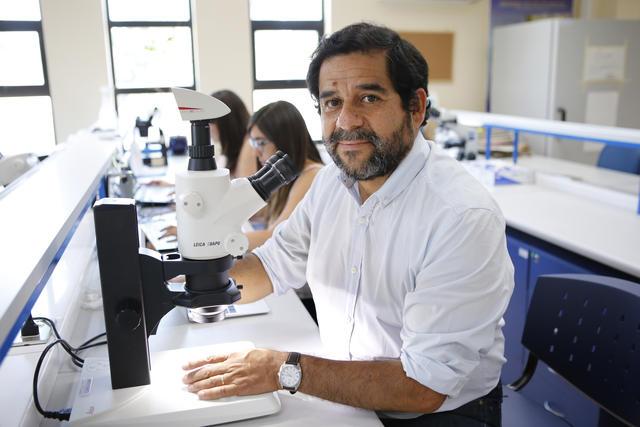 Dr. Víctor Hugo Monzón, decano de la Facultad de Ciencias Básicas y director del Laboratorio de Ecología de Abejas de la UCM. -fotografía de archivo DIRCOM UCM-.