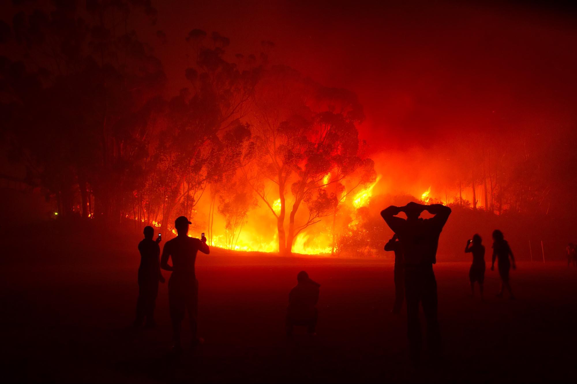 Columna de opinión: Facilitar la gestión y prevención de incendios forestales