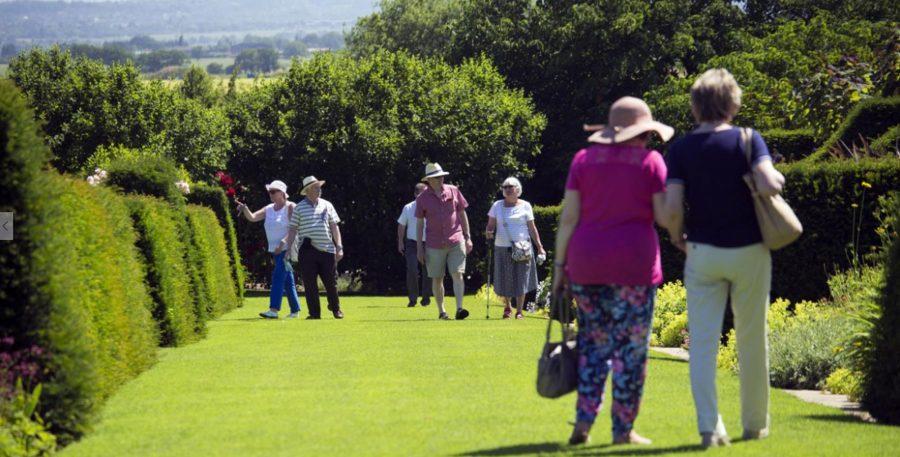 Adultos mayores deben extremar los cuidados en salud durante el verano