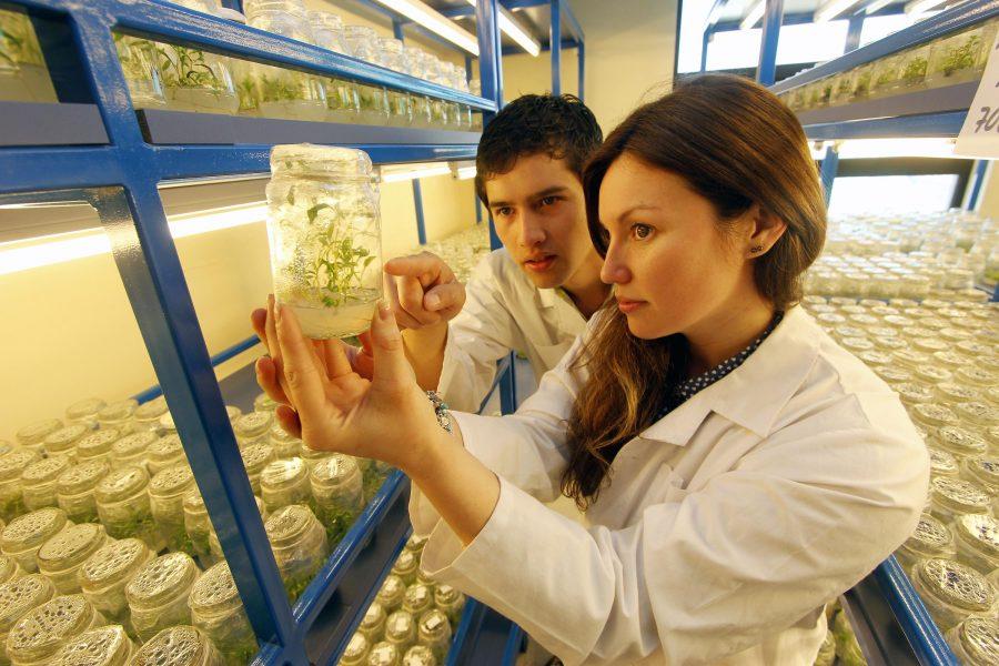 Crean Centro de Investigación para potenciar el desarrollo del Maule