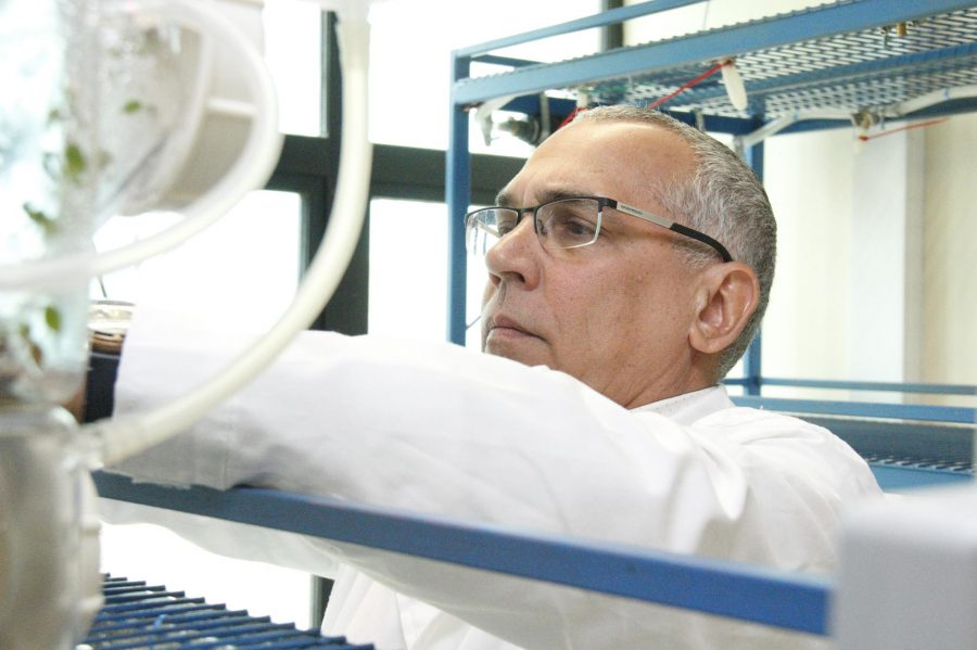 UCM celebra la obtención de su primera patente de propiedad intelectual científica