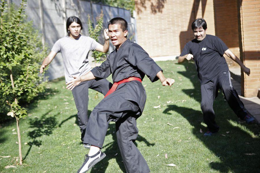 Desde artes marciales hasta astronomía: Exitosa escuela de verano al servicio de la comunidad