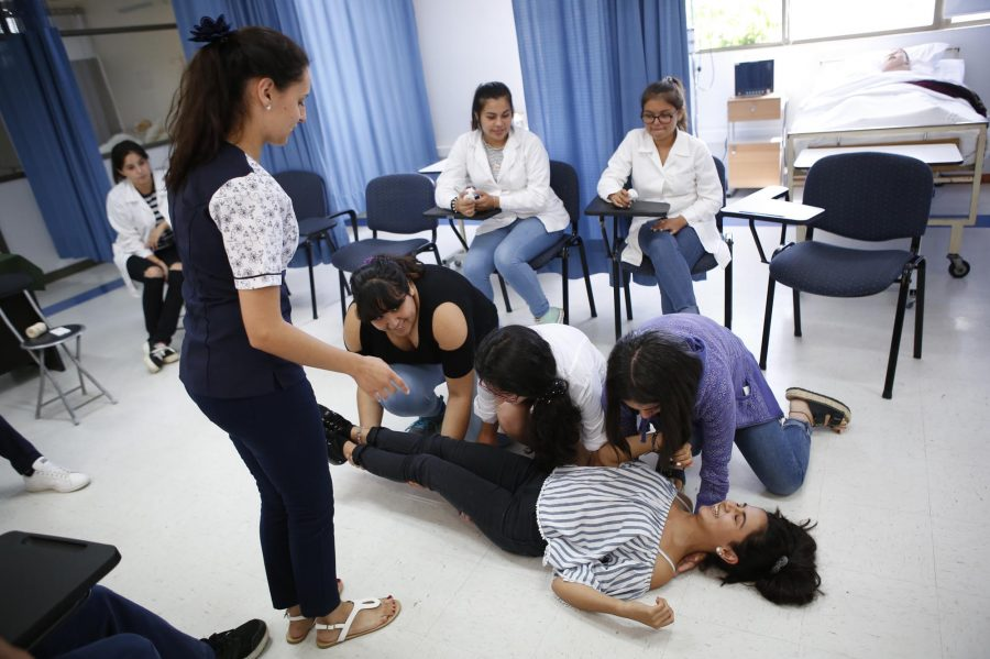 Novedosos cursos trae el Programa Escuelas de Verano UCM 2019